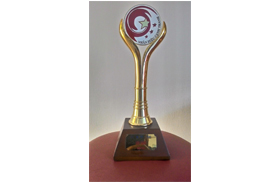 Competitive brand gold trophy