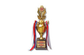 Vietnamese construction sector brand gold trophy